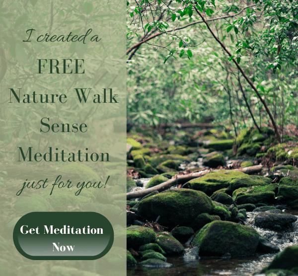 Nature Walk Sense Meditation Email graphic (2)